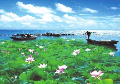 荆州美丽风景图片